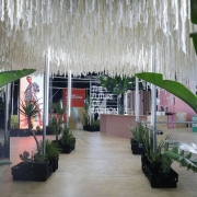 Woolworths-Sustainable-Installation-at-SAFW_preview.jpg