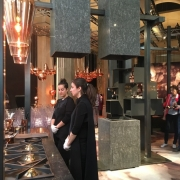 tom dixon & caesarstone fire
