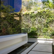 Avenue Fresnaye Villa Entrance architecture & landscaping - Interior Architectural design by Jenny Mills Architects