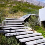 Stairs over natural vegetation