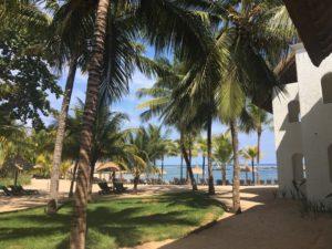Mauritian Inspirations