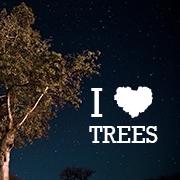 ilovetrees_1.jpg